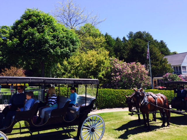 horse and buggy travel